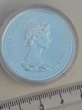 1 доллар, Канада, 1974 год, 100 лет городу Виннипег, серебро, фото №4