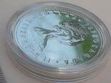 1 доллар, Канада, 1978 год, XI игры содружества в Эдмонтоне, серебро, фото №3