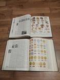 Украинский советский энциклопедический словарь -2 тома, фото №8