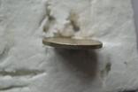 2 гривні 1998 р Сосюра, фото №8