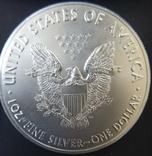Доллар США 2018 Американский орёл Шагающая свобода, фото №3