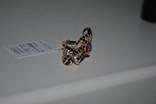 Золотое кольцо 585 проба новое. photo 7