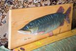 """Продам рыбу """"Esox Lusius"""" ручная работа, красота, как живая photo 3"""