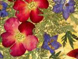 Цветочная фантазия, композиция из засушенных цветов и листьев photo 4