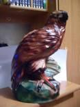 Копілка орел, фото №8