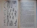 Зенитные подразделения в бою. (руководство), фото №5