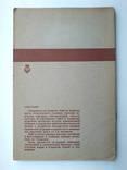 Нефтяные месторождения 1933г. Тираж 2000 экз., фото №12