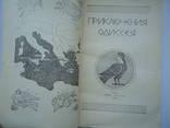 Приключения одиссея, фото №4
