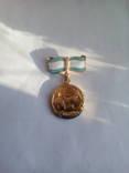 Медаль за материнство