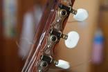 Гитара Strunal 4670 (Кремона) photo 7