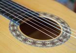 Гитара Strunal 4670 (Кремона) photo 9