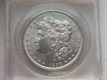 Доллар США 1898 года Морган слаб MS-60