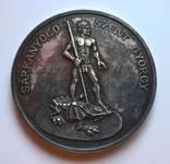 Настольная медаль полиции, серебро 34 грамма.
