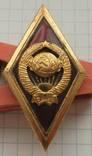 Высшая школа МВД,лмд