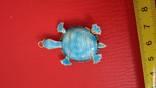 Черепаха, фото №6