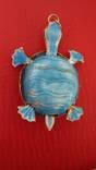 Черепаха, фото №7