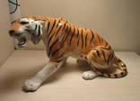 Тигр Артель Прогресс