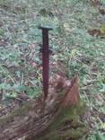 Скифский биметаллический меч Акинак photo 2