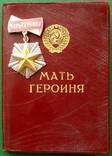 Мать - Героиня №13 615 награждение 1946 года