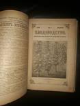 1891 Годовая подшивка Плодоводства