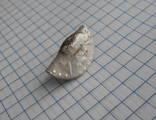 Кошель серебра Екатерины II, повторно в связи с не выкупом .лота. photo 18