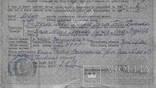 Свидетельство о рождении - Кучма photo 4
