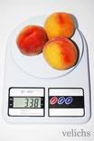 Кухонные электронные весы SF-400 (до 10кг)