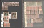 Альбом с марками импер. России с 1 грн. photo 6