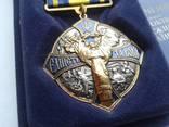 Медаль или Орден Єдність та Воля photo 5