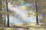 Картина В лесу на рассвете, 20х30 см. живопись на холсте, оригинал, с подписью