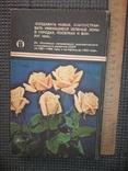 Книга цветовода.1983 год., фото №11