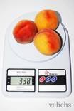 Кухонные электронные весы DOMOTEC MS-400 (до 10кг)