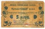 Ямполь, Позичково-Ощадне Товариство, 1919г кредитный знак 5крб, законченный, редкий.