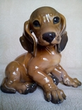 Крупный щенок таксы. Th.Karner, Rosenthal 15,5x17 см.