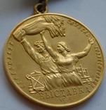Комплект ВСХВ/ВДНХ: Большая золотая ВСХВ 1939г. + 3 серебро ВСХВ + много других на одного photo 1