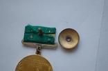 Комплект ВСХВ/ВДНХ: Большая золотая ВСХВ 1939г. + 3 серебро ВСХВ + много других на одного photo 4