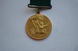 Комплект ВСХВ/ВДНХ: Большая золотая ВСХВ 1939г. + 3 серебро ВСХВ + много других на одного photo 5