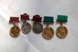 Комплект ВСХВ/ВДНХ: Большая золотая ВСХВ 1939г. + 3 серебро ВСХВ + много других на одного photo 8