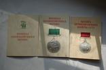 Комплект ВСХВ/ВДНХ: Большая золотая ВСХВ 1939г. + 3 серебро ВСХВ + много других на одного photo 10