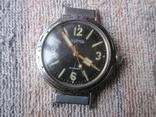 Часы Амфибия Ушастая экспорт-2 шт. photo 3