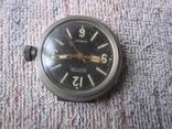 Часы Амфибия Ушастая экспорт-2 шт. photo 5