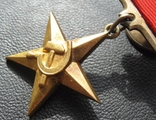 Золотая звезда Герой Соцтруда № 3621 photo 2