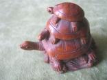 Три черепахи., фото №2