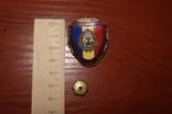 Военный знак Румыния (отличник), фото №2