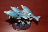 Дельфинчики, фото №3
