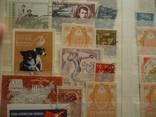 Царская россия ,ссср и мир 70 марок с 1 грн photo 4