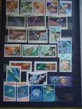 Почтовые марки 500+ шт СССР и страны мира photo 11