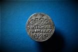 Коронный грош Сигизмунда 1 1528 года
