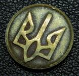 50 шагов 1992 1.2А г магнітна сталь, покрита латунню, фото 6