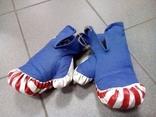 Перчатки боксёрские(М2017/32-2)